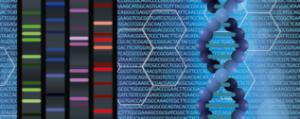 DNAbluecode2