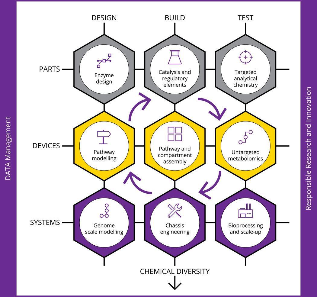 SYNBIOCHEM - Design Build Test Diagram